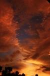 Awan di langit senja